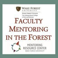 Advice & Strategies for the Mid-Career Faculty Member