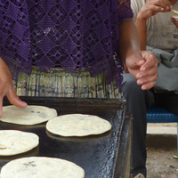 Hunger and Malnutrition Lessons from Latin America