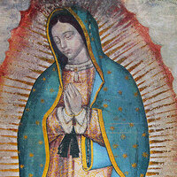 Our lady of Guadalupe Celebration [Loop]