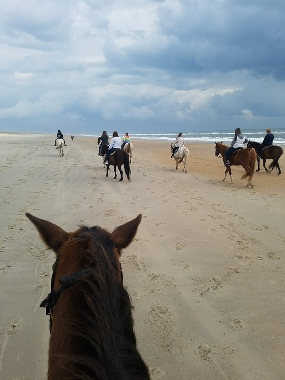 Beach Horseback Riding Trip