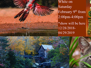 God's Nature Through Photographs and Artwork:  Artist Reception