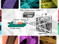 Functional Nanofibers via Electrospinning and Their Applications