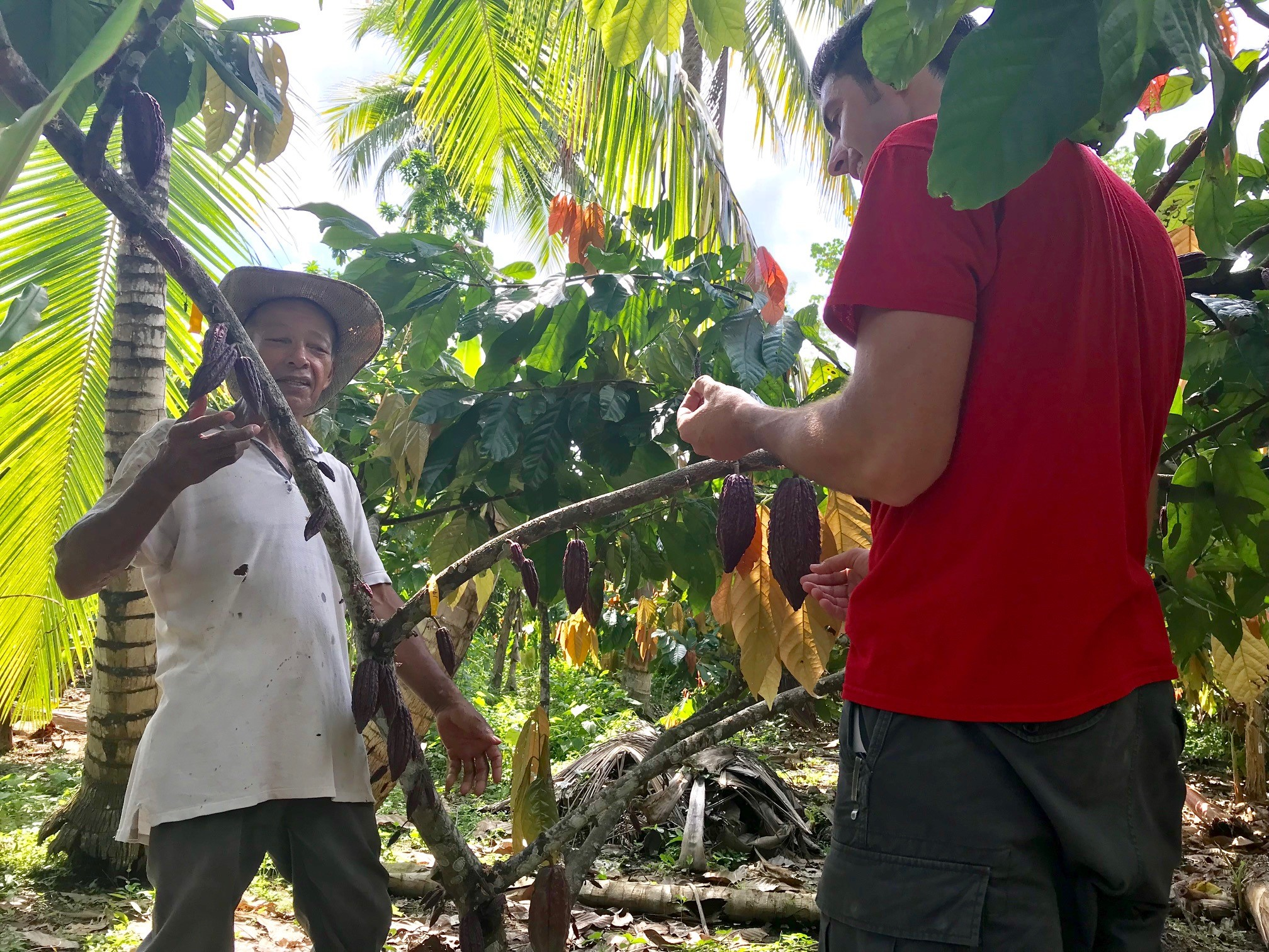 "LASP Seminar: ""Using Cacao to Catalyze Development: The Case of Cacao in Montes de Maria, Colombia, "" by Kalob Williams & Miguel Gomez"