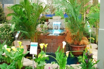 Landscape Plant Diseases and their Management