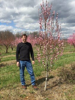 """""""Shedding light on tree shape: the role of IGT genes in plant growth orientation"""": Chris Dardick"""