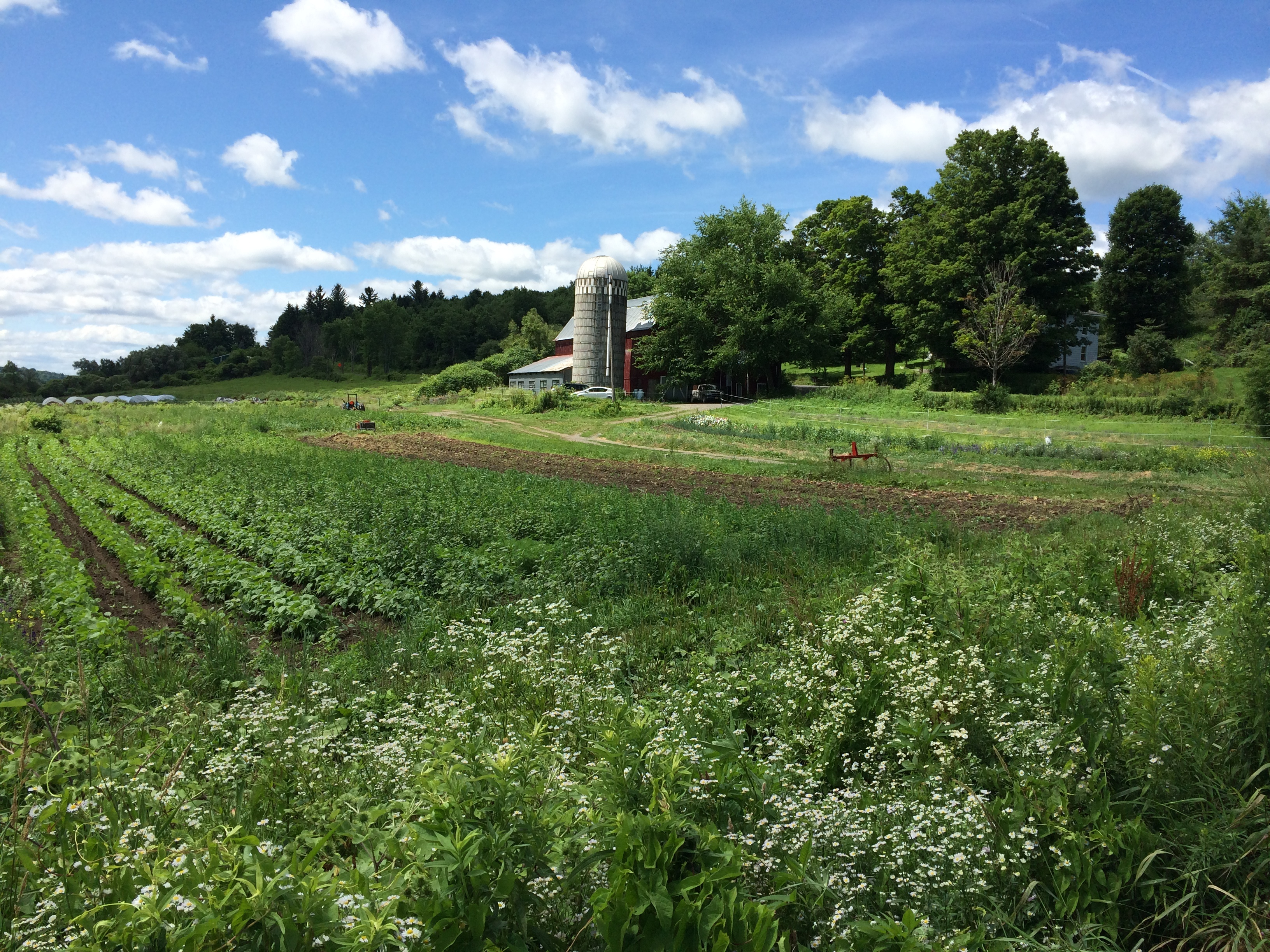 Cornell's Climate Smart Farming program: Helping Farmers Respond to Climate Change