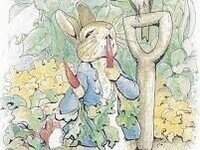 Auditions - Peter Rabbit