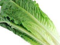 Lettuce on the Lawn