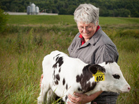 Cornell Dairy Center of Excellence Seminar Series