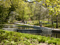 NYC Cornellians: New York Botanical Gardens Tour with CALS Professor William Miller