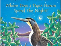 "Reading: ""Where Does a Tiger-Heron Spend the Night?"""