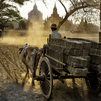 "Urban Arts & Culture: ""Looking East: China, India and Myanmar (Burma)"""