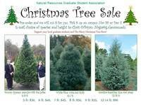Christmas Tree Sale - Natural Resources Graduate Student Association